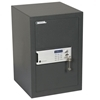 Picture of Certified Professional Safe